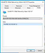 Possible_Device_ID_10gig_Aquantia_Win10.png